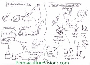 permaculture cup of tea