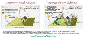 permaculture-advice