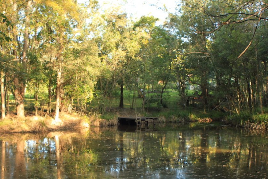 Permaculture Property For Sale – Cooroy, Queensland