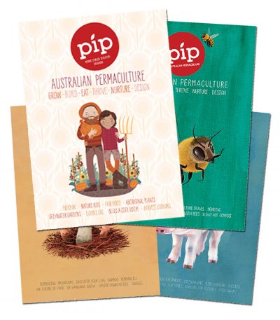 Pip Magazine Subscription