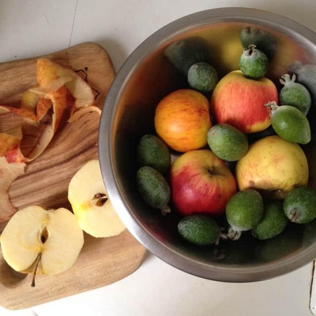 Apple & Feijoa Scrumble