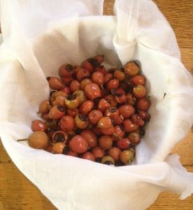 rosehip syrup on the way