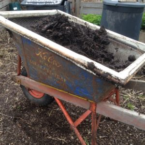 DIY potting mix - compost sieving