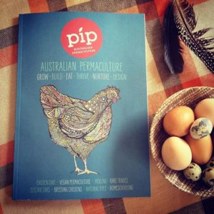 pip issue 7