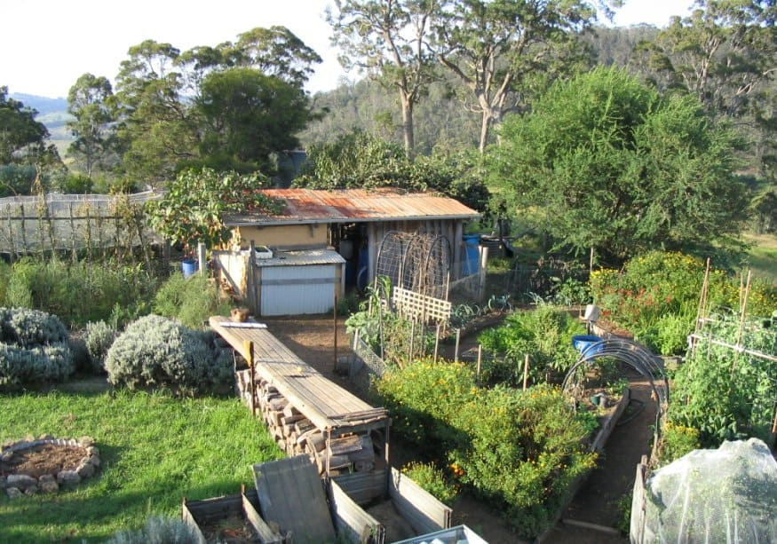 Issue 7 Sneak Peek: Sauveterre Permaculture Profile
