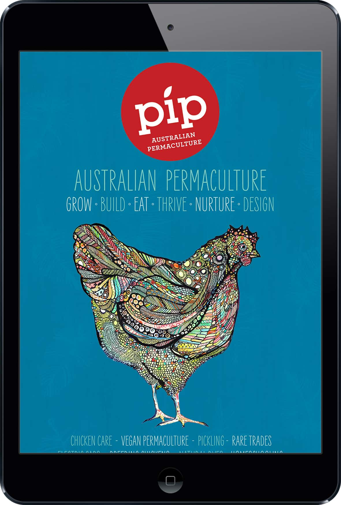 Pip Magazine Digital Subscription