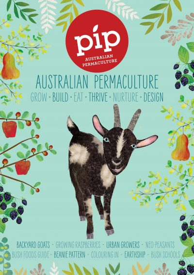 Pip Issue 8