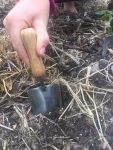 Image of hand trowel in the garden