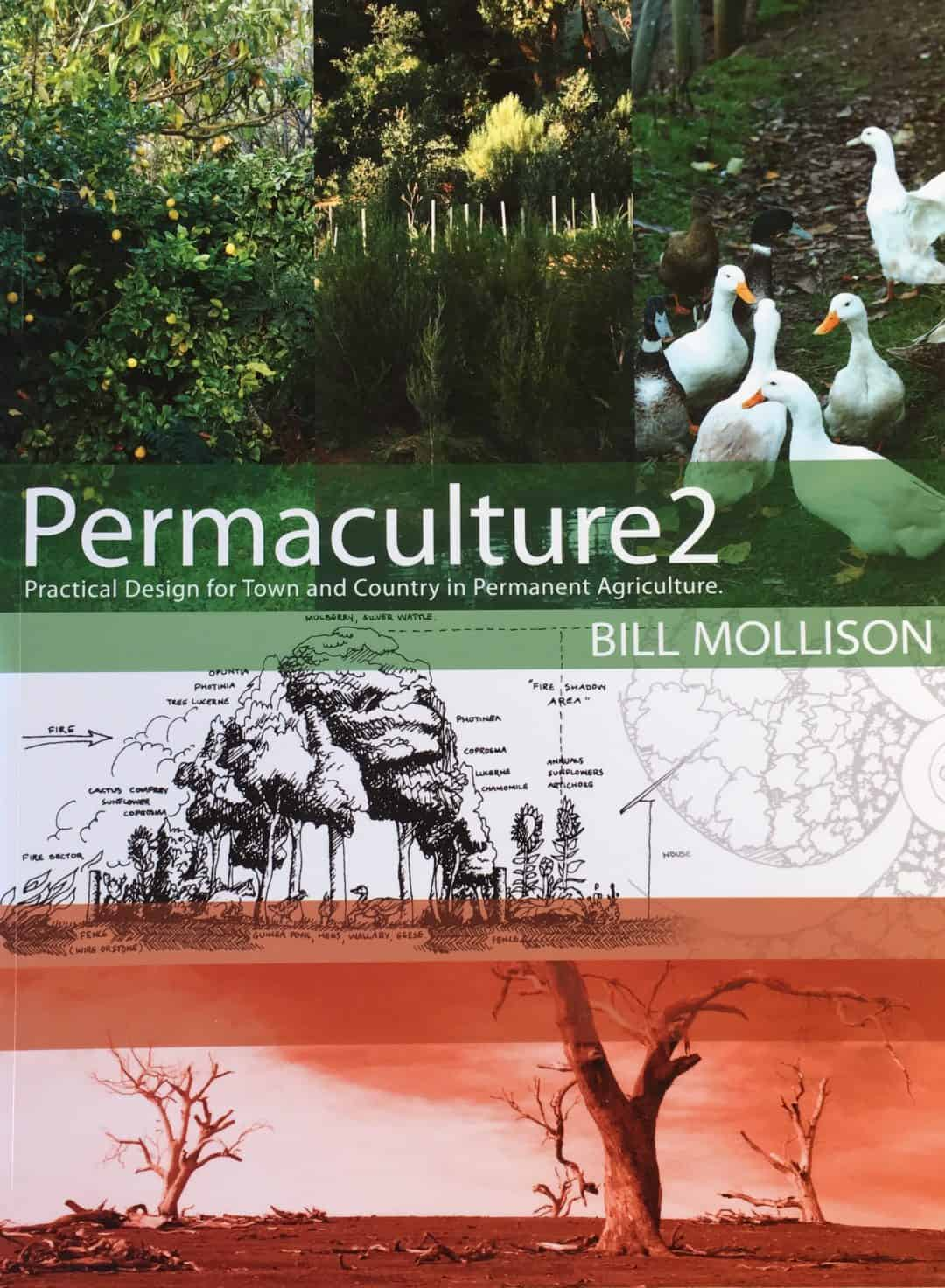 Imge of the cover of Permaculture Two by Bill Mollison