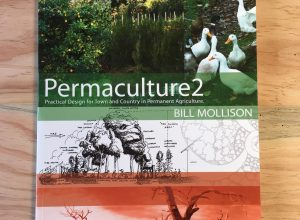 Image of the cover of Permaculture Two by Bill Mollison