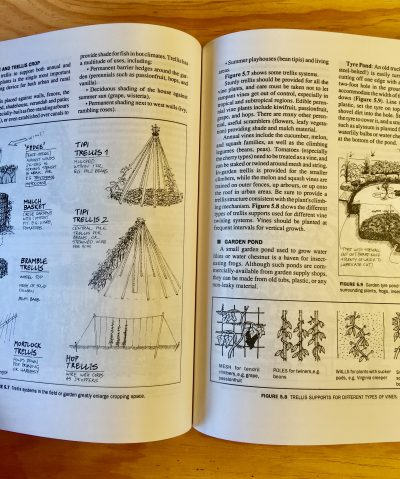 Image of pages inside Introduction to Permaculture By Bill Mollison with Reny Mia Slay