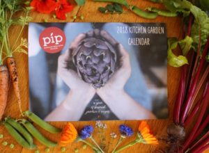 Pip Magazine - permaculture kitchen garden calendar surrounded by freshly harvested garden produce: beetroots, nasturtiums, peas, carrots