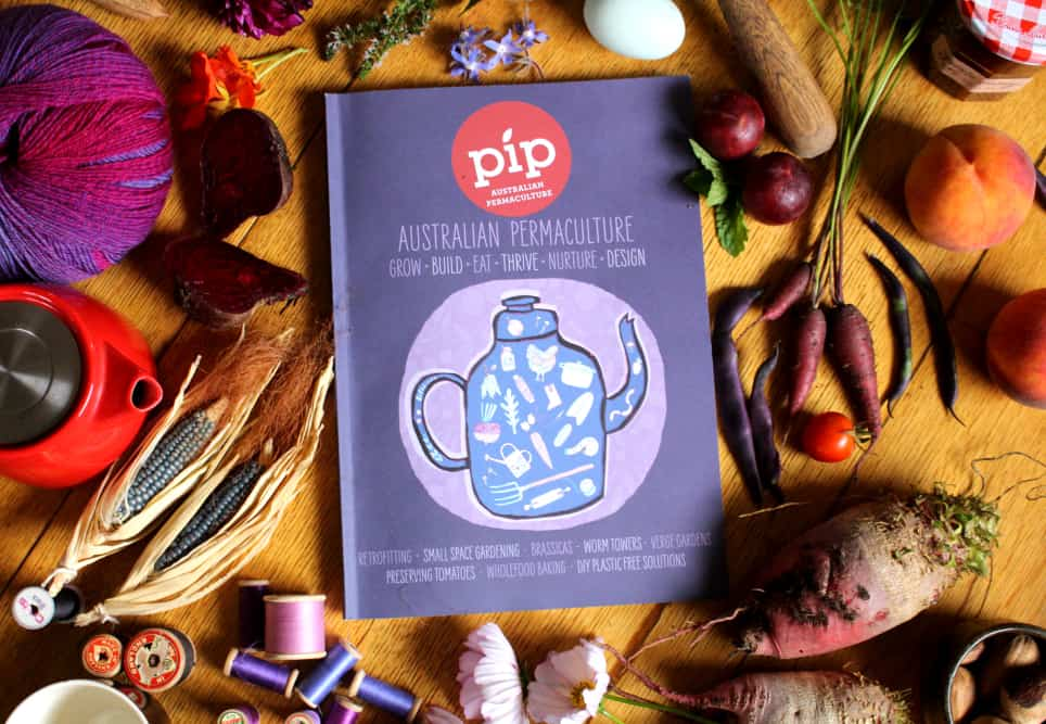 Pip Issue 10 has arrived!