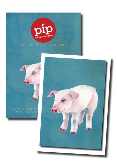 Pip Magazine - Issue 2 + Artwork