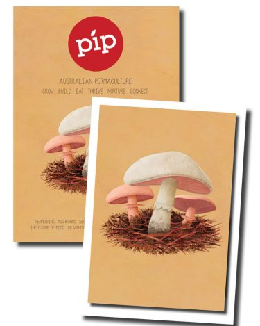 Pip Magazine - Issue 3 + Artwork