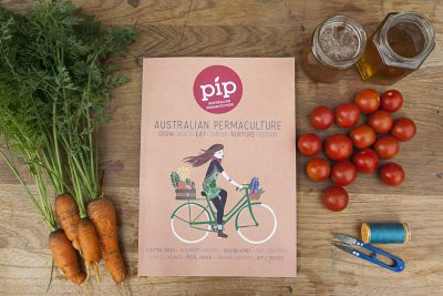 Pip Magazine issue 13 has landed.