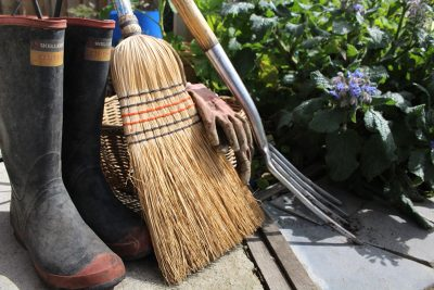 10 Tips to Spring Clean Your Garden for Summer