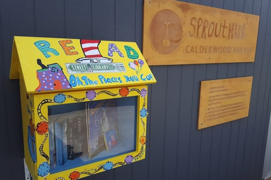 How to Start a Street Library