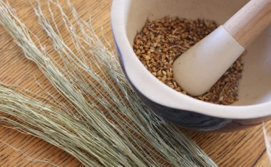 DIY Broom Millet Scrubbing Brushes