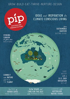 Pip_Issue16_Cover_finalLR