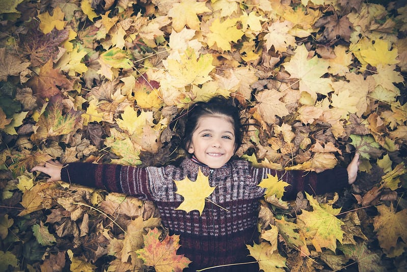 autumn leaves boy by Phillipe Put via Flickr