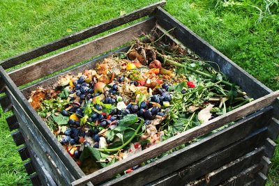 A Beginner's Guide to Composting Food Waste