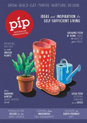 Pip_Issue17_Cover_FINAL_LR